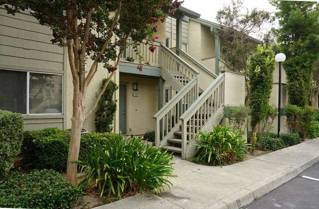 1054 Summershore Ct, San Jose, CA 95122 (#ML81811013) :: RE/MAX Gold