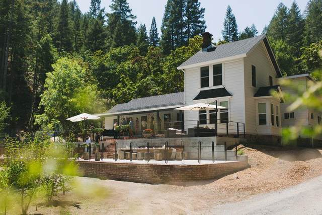 16790 Armstrong Woods Rd, GUERNEVILLE, CA 95446 (#ML81811275) :: Real Estate Experts