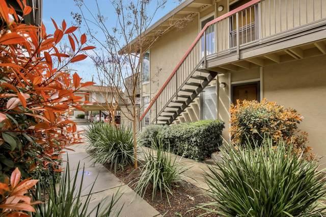 59 Massolo Dr B, Pleasant Hill, CA 94523 (#ML81811385) :: RE/MAX Gold