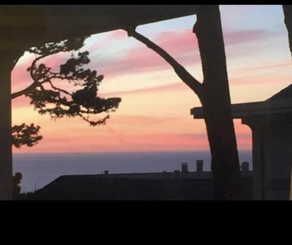 16 Skyline Crst, Monterey, CA 93940 (#ML81811480) :: Alex Brant
