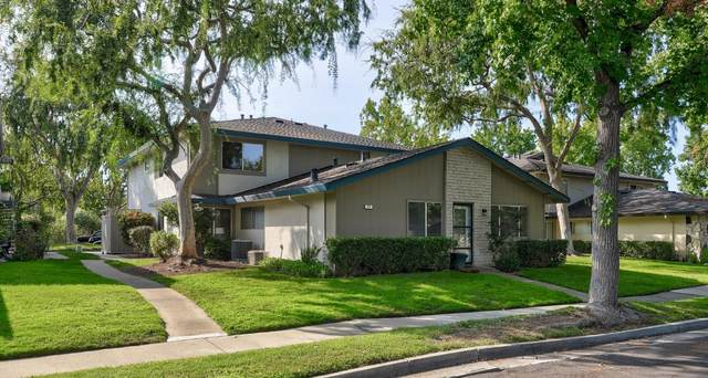 371 N 1st St 3, Campbell, CA 95008 (#ML81811941) :: Live Play Silicon Valley