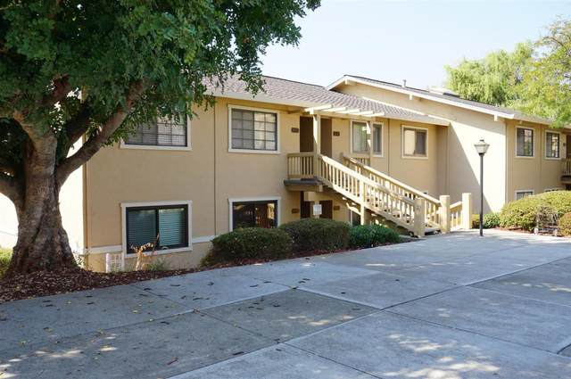 5058 Cribari Vale, San Jose, CA 95135 (#ML81812039) :: The Realty Society