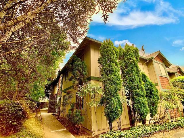 216 Vista Prieta Ct, Santa Cruz, CA 95062 (#ML81812074) :: Schneider Estates