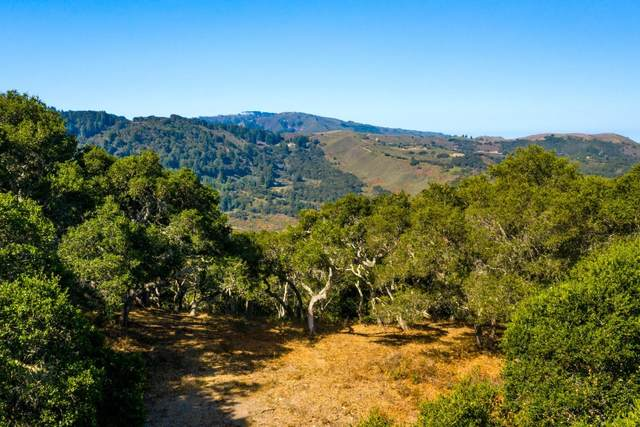 2 Corral Run, Carmel, CA 93923 (#ML81812112) :: Alex Brant
