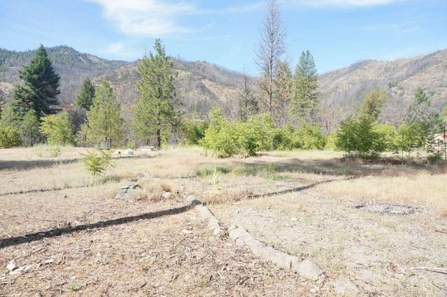 101 River Acres, Junction City, CA 96048 (#ML81812267) :: Alex Brant