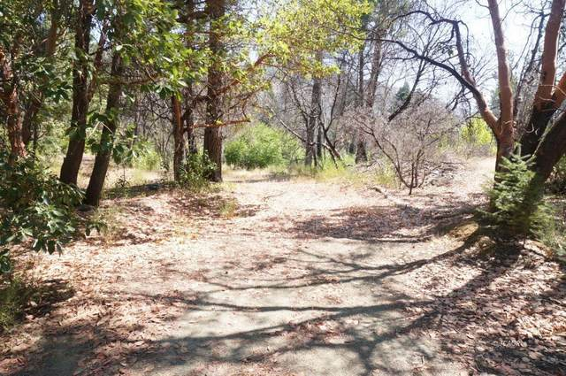 250 Bear Springs Rd, Junction City, CA 96048 (#ML81812281) :: Alex Brant