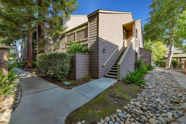 941 Catkin Ct, San Jose, CA 95128 (#ML81812597) :: Real Estate Experts