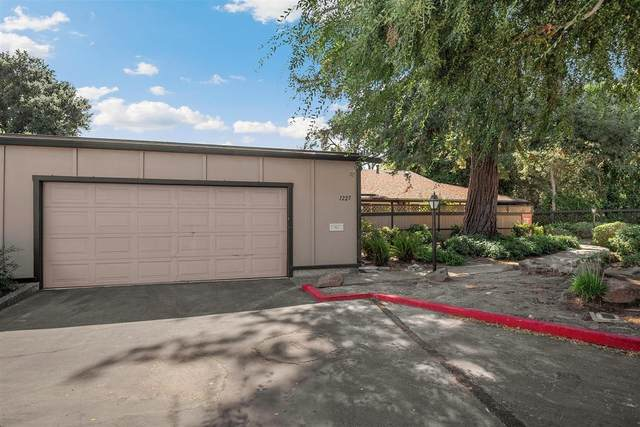 1225 Blackberry Ter, Sunnyvale, CA 94087 (#ML81812752) :: The Sean Cooper Real Estate Group