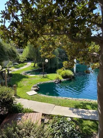 980 Kiely Blvd 203, Santa Clara, CA 95051 (#ML81812783) :: Real Estate Experts