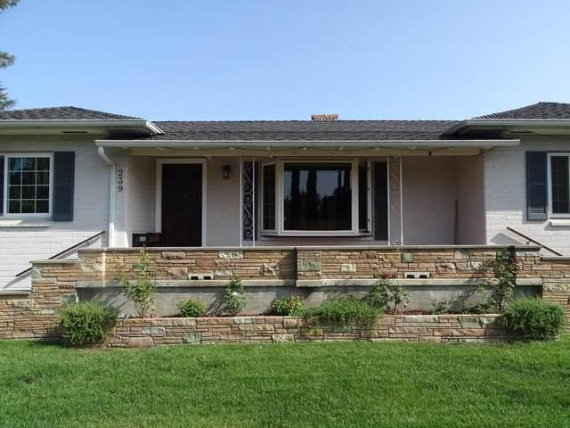 239 N El Monte Ave, Los Altos, CA 94022 (#ML81812865) :: The Sean Cooper Real Estate Group