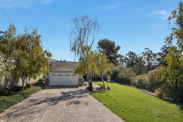 3620 El Grande Dr, San Jose, CA 95132 (#ML81813502) :: Intero Real Estate