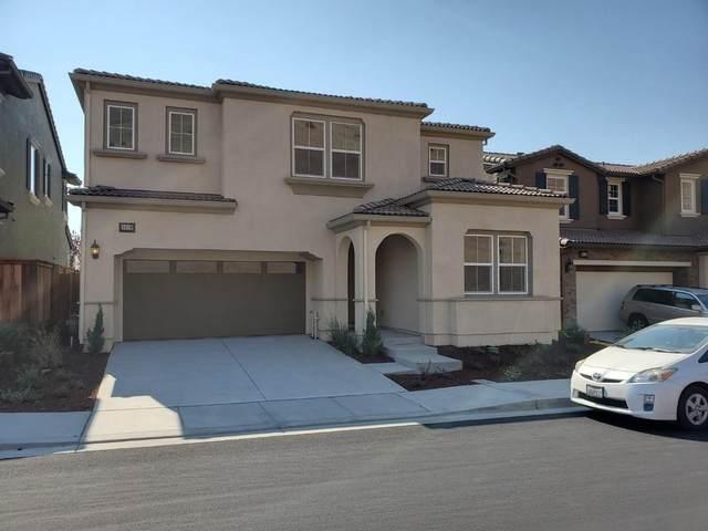 30119 Mountain View Dr, Hayward, CA 94544 (#ML81814045) :: The Realty Society
