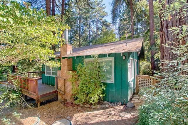141 Roble Rd, Boulder Creek, CA 95006 (#ML81815225) :: Schneider Estates
