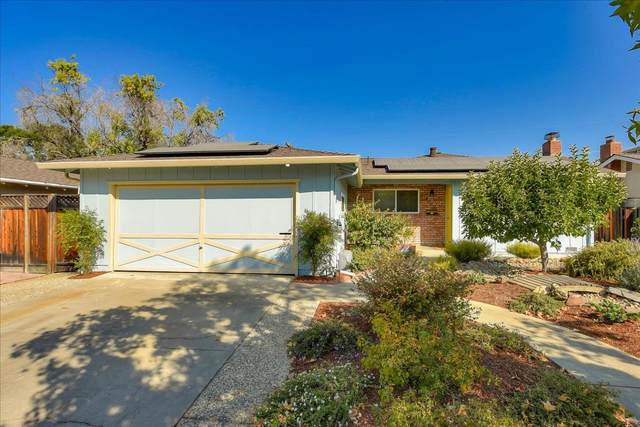 4260 Rondeau Dr, San Jose, CA 95124 (#ML81815859) :: The Realty Society