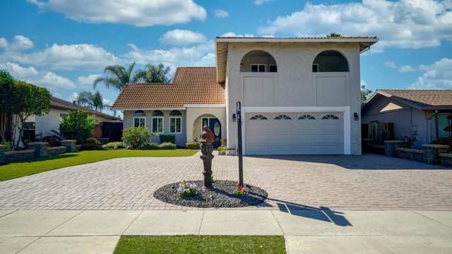 1181 Morrill Ave, San Jose, CA 95132 (#ML81815977) :: The Goss Real Estate Group, Keller Williams Bay Area Estates