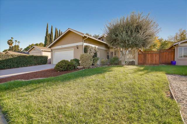 335 Vineyard Dr, San Jose, CA 95119 (#ML81816700) :: Strock Real Estate