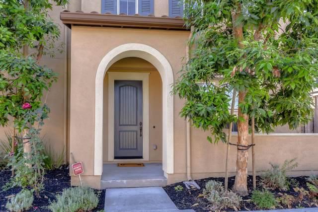 106 Avon Ter, Sunnyvale, CA 94087 (#ML81816706) :: Intero Real Estate