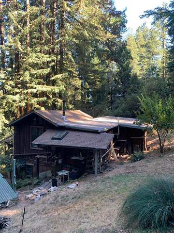 887 Scenic Way, Ben Lomond, CA 95005 (#ML81816959) :: Olga Golovko