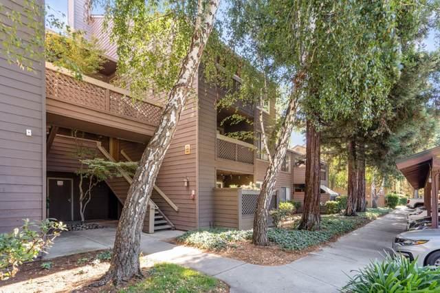 692 Teatree Ct, San Jose, CA 95128 (#ML81817034) :: Real Estate Experts