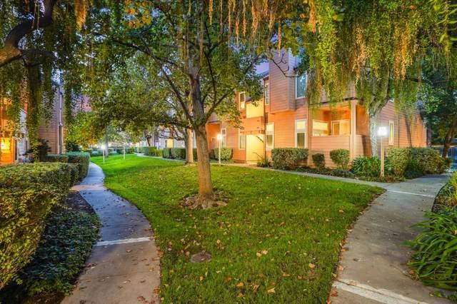 5280 Borneo Cir, San Jose, CA 95123 (#ML81817236) :: Intero Real Estate