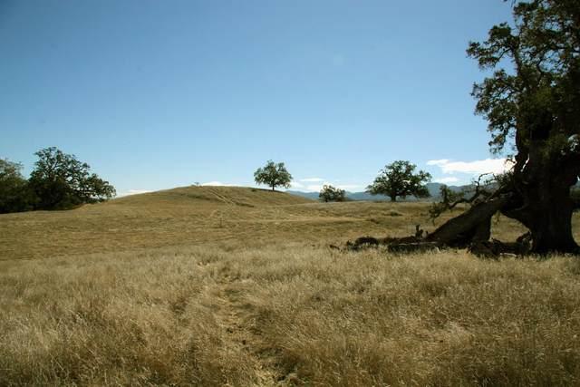 24 Vasquez Trl, Carmel Valley, CA 93923 (#ML81817466) :: Intero Real Estate