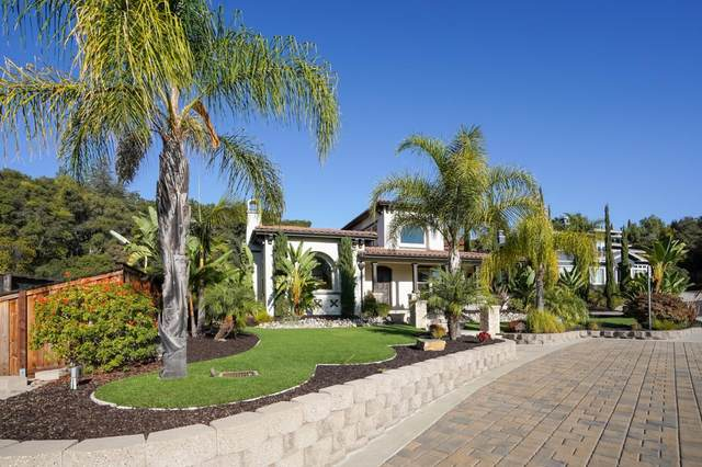 10 Rathgar Ct, Redwood City, CA 94062 (#ML81817686) :: Strock Real Estate