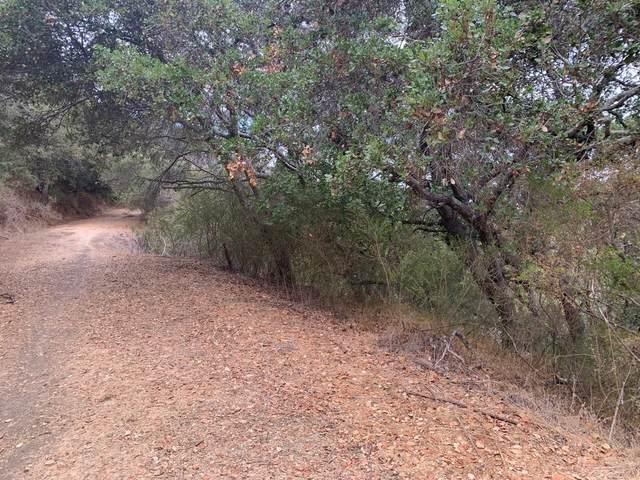 0 Lower Lock, Belmont, CA 94002 (#ML81817702) :: The Kulda Real Estate Group