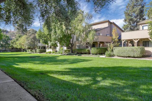 155 Del Monte Ln, Morgan Hill, CA 95037 (#ML81820427) :: The Realty Society