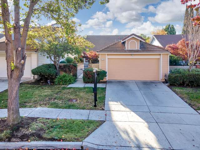 1229 Moulton Dr, Milpitas, CA 95035 (#ML81821082) :: Robert Balina | Synergize Realty