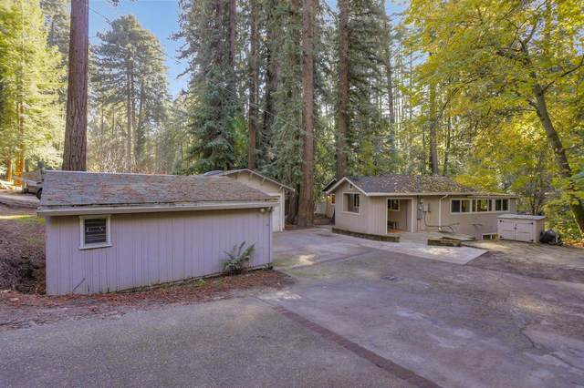185 Spring Creek Rd, Boulder Creek, CA 95006 (#ML81821436) :: The Kulda Real Estate Group