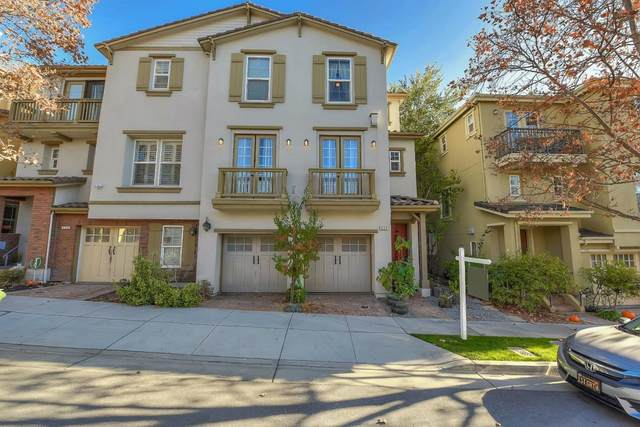 233 Olive Hill Dr, San Jose, CA 95125 (#ML81821479) :: Real Estate Experts