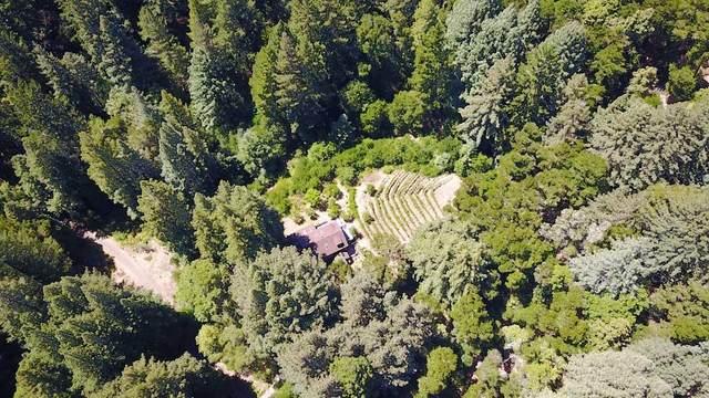Highway 9, Boulder Creek, CA 95006 (#ML81821652) :: The Kulda Real Estate Group