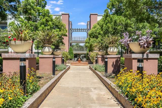 1060 S 3rd St 251, San Jose, CA 95112 (#ML81821679) :: The Kulda Real Estate Group