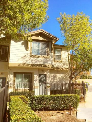 334 Celebration Dr, Milpitas, CA 95035 (#ML81822280) :: The Kulda Real Estate Group