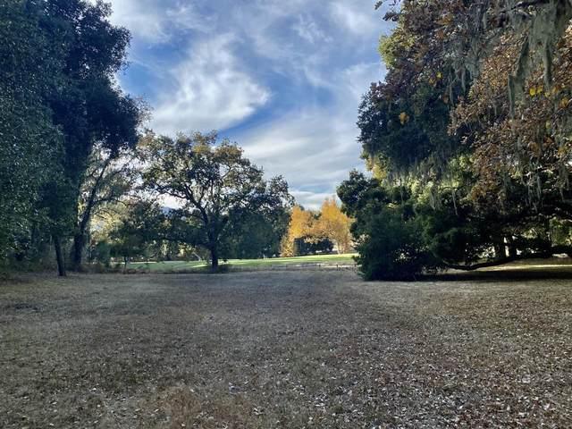20 Pronghorn Run, Carmel Valley, CA 93923 (#ML81822295) :: The Gilmartin Group