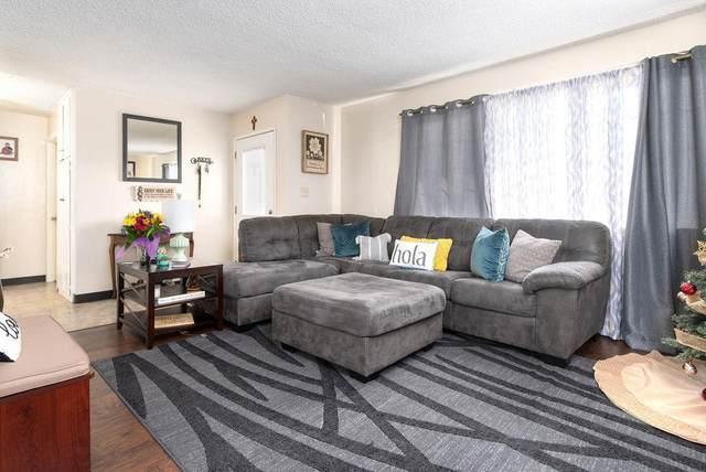 348 Royal Ave, San Jose, CA 95126 (#ML81822330) :: The Sean Cooper Real Estate Group