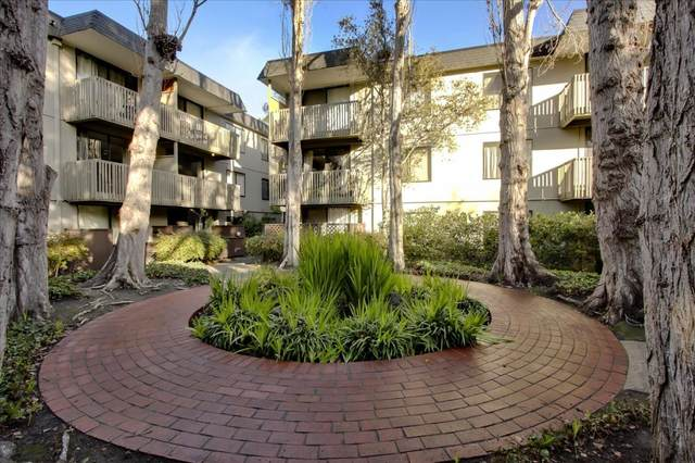 5134 Shelter Creek Ln, San Bruno, CA 94066 (#ML81824915) :: The Sean Cooper Real Estate Group