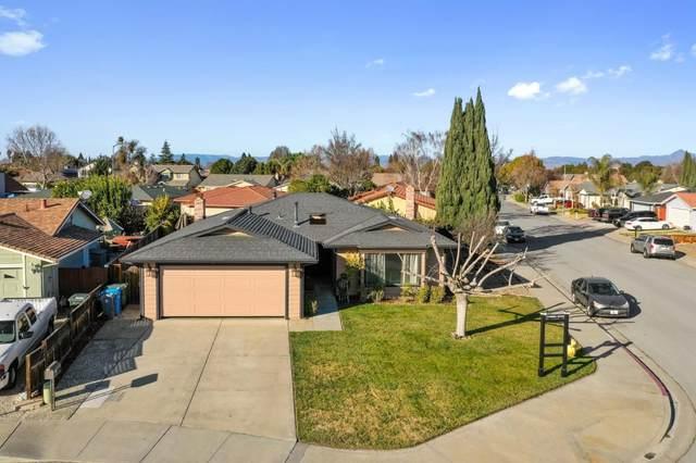 1120 Marne Dr, Hollister, CA 95023 (#ML81824922) :: Strock Real Estate