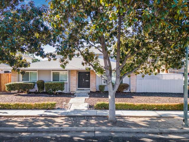 903 Tamarack Ln, Sunnyvale, CA 94086 (#ML81825560) :: Real Estate Experts