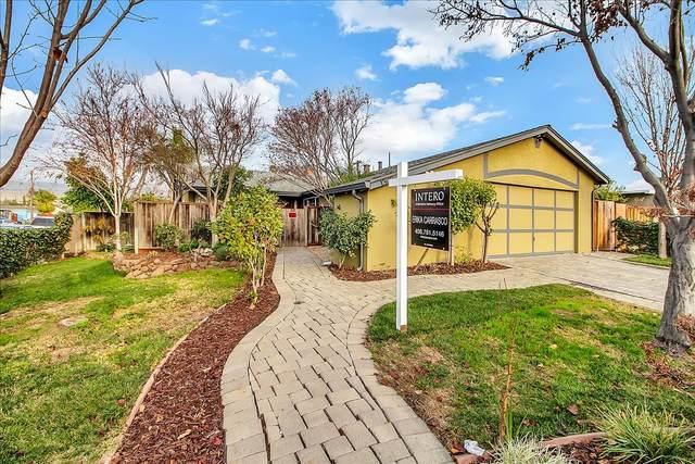 1302 Zephyr Ct, San Jose, CA 95127 (#ML81825748) :: Schneider Estates