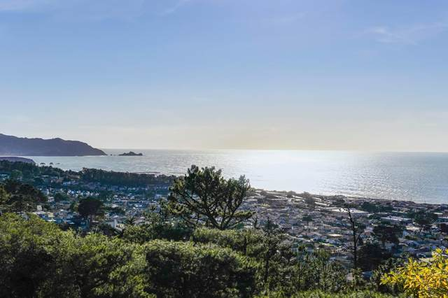 278 Beachview Ave 21, Pacifica, CA 94044 (#ML81826175) :: The Gilmartin Group