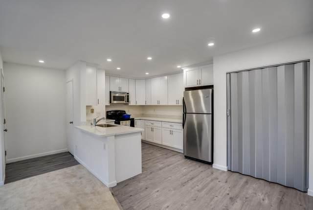 238 Hackamore Cmn, Fremont, CA 94539 (#ML81826264) :: The Kulda Real Estate Group