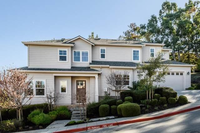 19 Madrone Ct, San Mateo, CA 94403 (#ML81826380) :: Intero Real Estate