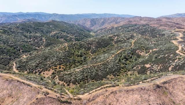 51541 Mines Rd, San Jose, CA 95140 (#ML81826382) :: RE/MAX Gold