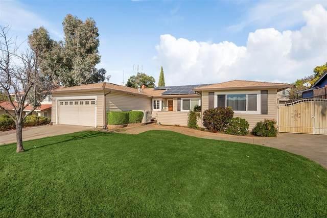 3681 Slopeview Dr, San Jose, CA 95148 (#ML81826720) :: The Goss Real Estate Group, Keller Williams Bay Area Estates