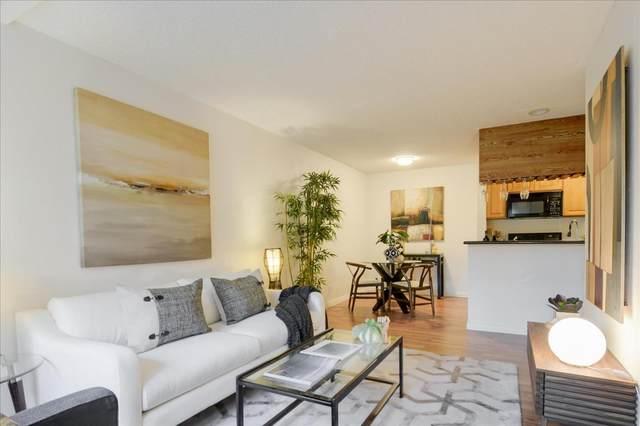 355 Half Moon Ln 4, Daly City, CA 94015 (#ML81826910) :: The Kulda Real Estate Group