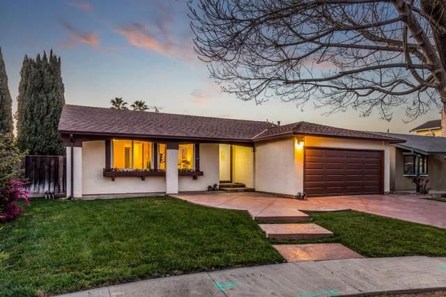 99 Squarehaven Ct, San Jose, CA 95111 (MLS #ML81827222) :: Compass