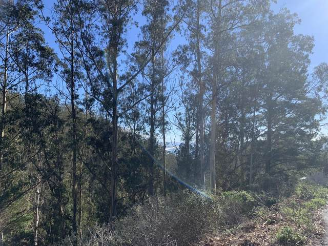 0 Dolphine Ave, El Granada, CA 94018 (#ML81827645) :: The Kulda Real Estate Group