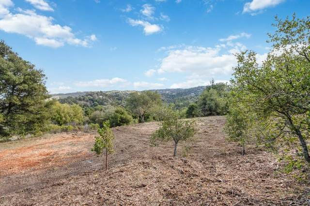 Lot 13 Alpine Rd, Portola Valley, CA 94028 (#ML81828083) :: The Goss Real Estate Group, Keller Williams Bay Area Estates