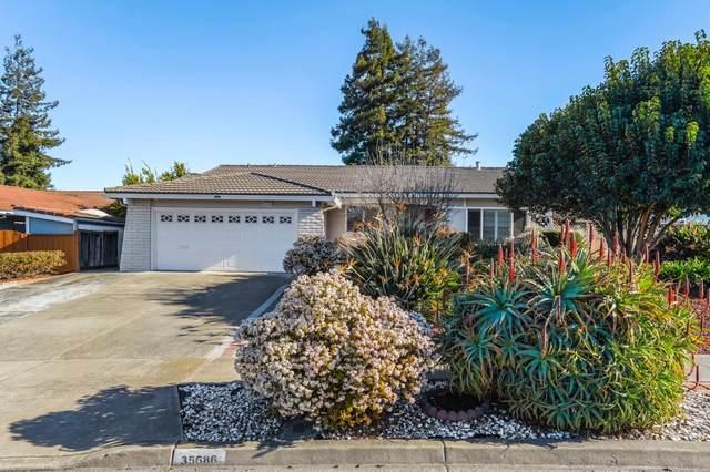 35686 Farnham Dr, Newark, CA 94560 (#ML81828265) :: Real Estate Experts